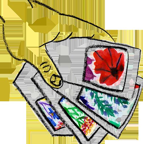 book 2 pollinator feature image square
